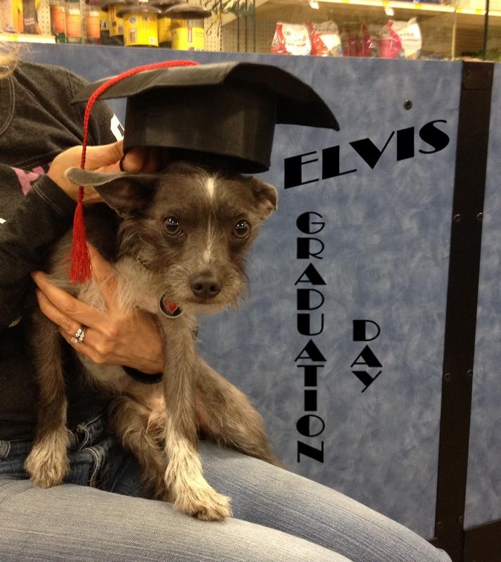 Elvis FKA Milton